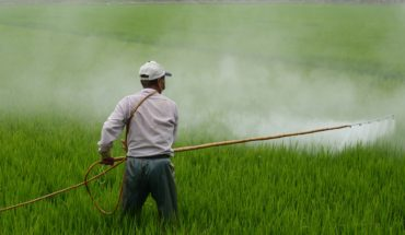 Pesticide-Use-Can-Cause-Cancer